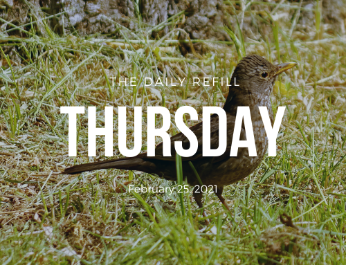 The Daily Refill – February 25, 2021