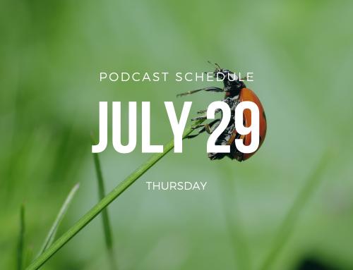 July 29, 2021